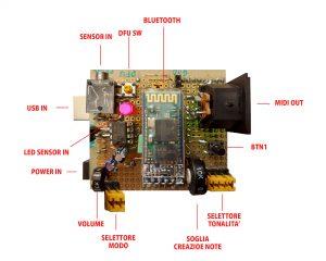 BIO Sound v1